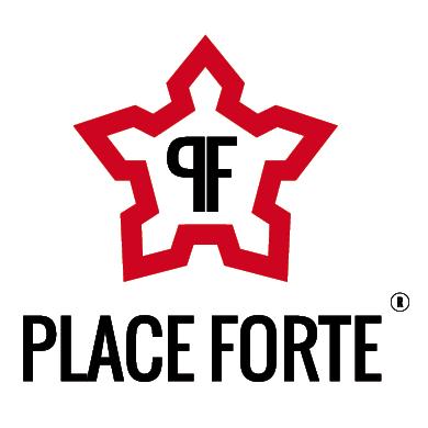 place-forte-3d