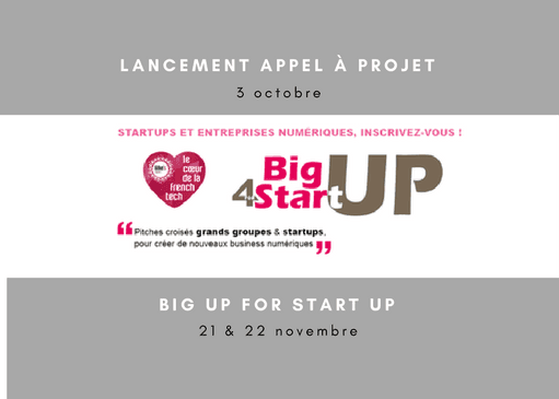 Big Up for Startup : activateur de business numérique